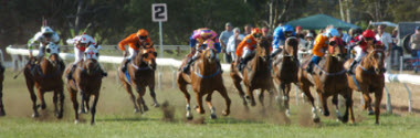 About the Toodyay Race Club