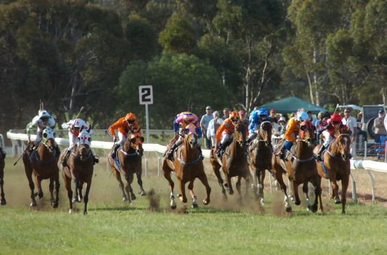 Toodyay Cup 2006 Lukaboom