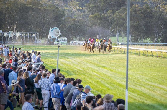 ToodyayCupDay_2018_117